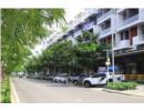 Lộ diện tuyến phố thương mại đẳng cấp bậc nhất Sài Gòn