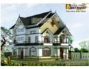 Phương án xây biệt thự nhỏ phong cách châu Âu trên đất 11x15m