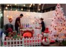 Cái gì cũng có thể thuê: Cây Thông Noel cũng cho thuê