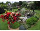 Khu vườn đẹp như thiên đường của cặp vợ chồng già người Anh