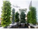 Ngưỡng mộ vườn rau thẳng đứng, xanh mơn mởn của ông bố Sài Gòn