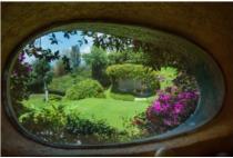 Ngôi nhà hình củ lạc ẩn mình giữa lùm cây xanh