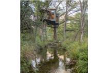 Chiêm ngưỡng ngôi nhà độc đáo treo lơ lửng trên cây