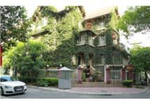 Ngắm ngôi biệt thự 3 tầng phủ kín dây leo chằng chịt ở Hà Nội