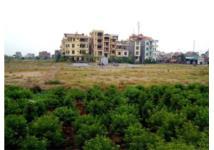 Hà Nội nâng cao hiệu lực quản lý, sử dụng đất nông nghiệp