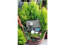 Thiết kế góc vườn xinh xắn cho nhà bạn