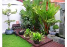 6 ý tưởng hay thiết kế sân vườn nhỏ cực xinh