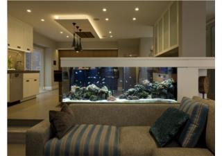 9 vị trí tối kỵ đặt bể cá phong thủy trong nhà